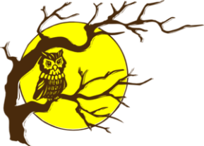 Owl and full moon