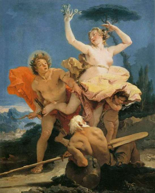 apollo and daphne by gianbattista tiepolo