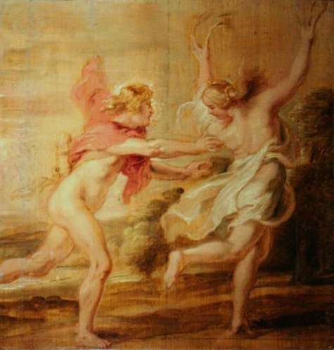 apollo & daphne Peter Paul Rubens