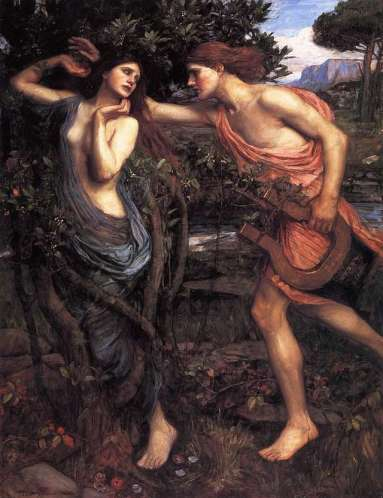 apollo and daphne by waterhouse