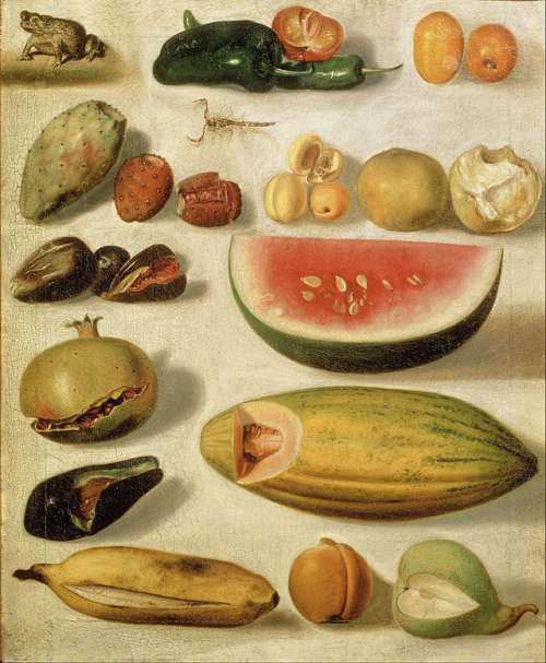 still-life-with-fruit-with-scorpion-and-frog-hermenegildo-bustos-oil-on-canvas