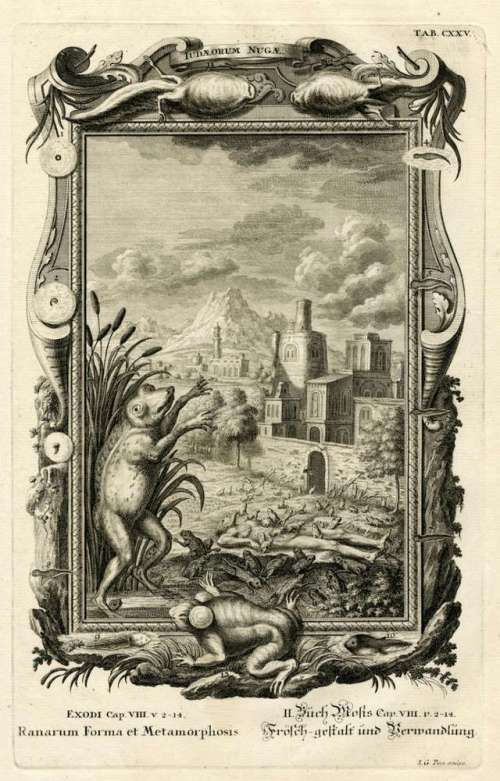 frogs-plague-exodus-old-testament-plate-johann-georg-pintz