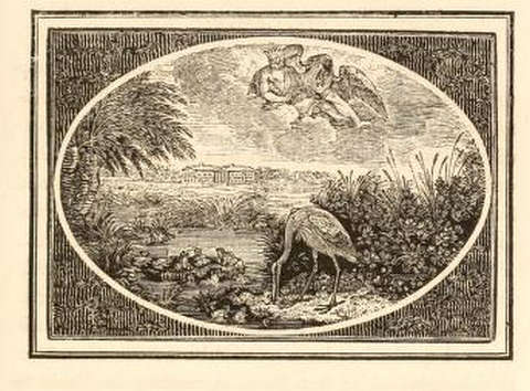 the-frogs-and-their-king-thomas-bewick-1