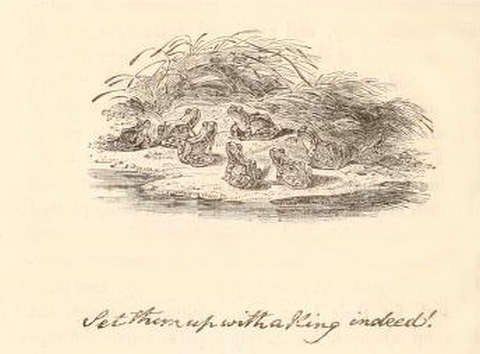 the-frogs-and-their-king-thomas-bewick-2